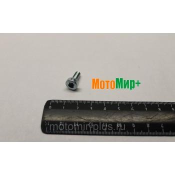 Болт крепления держателя амортизатора CS352,353