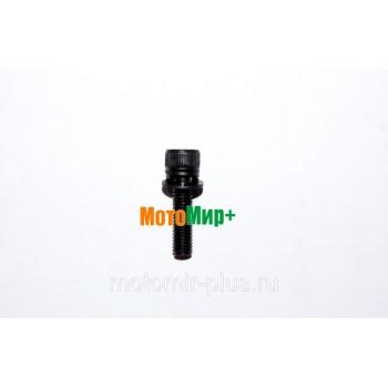Болт крепления цилиндра M5*20 бензопилы Champion 250 / 55