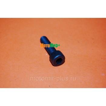 Болт крепления шнека для мотобура Champion AG243 / Champion AG252 (М8х30)